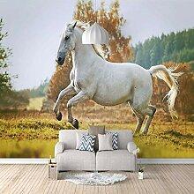 Fototapete Pferd im Gras Mauer Fresco Foto