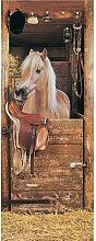 Fototapete Pferd im Stall 1845 cm x 50 cm 2-tlg.