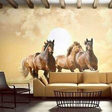 Fototapete Pferde im Galopp beige/braun