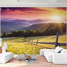 Fototapete Provence 352 x 250 cm - Vliestapete - Wandtapete - Vlies Phototapete - Wand - Wandbilder XXL - Runa Tapete 9022011c