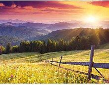 Fototapete Provence Landschaft Natur Vlies Wand