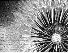 Fototapete Pusteblumen Schwarz Weiß Vintage Vlies