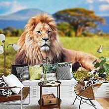Fototapete Schöne Mauer Löwe der Wiesen 3D