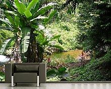 Fototapete selbstklebend Bananenbaum im Dschungel