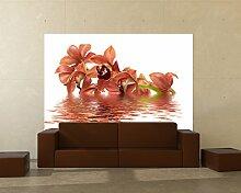 Fototapete selbstklebend orange Orchidee - 100x65