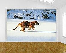 Fototapete selbstklebend Tiger - 155x100 cm -