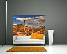 Fototapete selbstklebend Wüste Kaktus - 225x150
