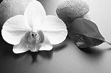 Fototapete selbstklebend Zen Steine mit Orchidee -