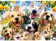 Fototapete Selfies Hunde 1.46 m x 208 cm Happy
