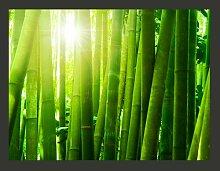 Fototapete Sonne und Bambus 193 cm x 250 cm East