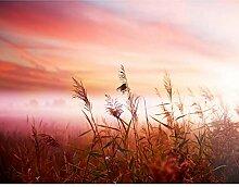 Fototapete Sonnenaufgang Rot 396 x 280 cm Vlies