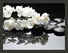 Fototapete Spa & Wellness, Steine und Orchidee 193