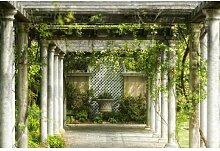 Fototapete Spazierweg im Garten 350 cm x 250 cm