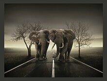 Fototapete Stadt der Elefanten 231 cm x 300 cm
