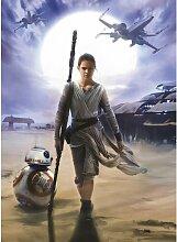 Fototapete Star Wars Rey Komar