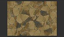 Fototapete Stein Blätter 210 cm x 300 cm East