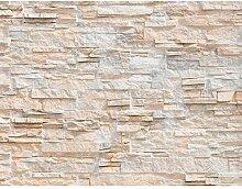 Fototapete Steinwand 3D Effekt Vlies Wand Tapete