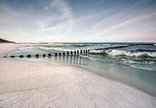 Fototapete Strand 3 m x 460 cm