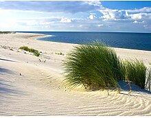 Fototapete Strand Meer 396 x 280 cm Vlies Wand