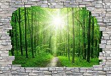 Fototapete Sunny Forest Mauer Maße (B/H):