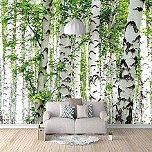 Fototapete Tapete 3d Effekt Birke Wald Aufkleber