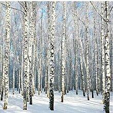 Fototapete Tapete 3d Effekt Natürliche Landschaft
