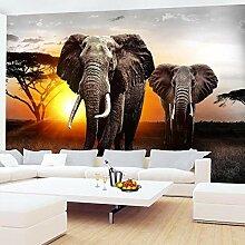 Fototapete Tapete Kinderzimmer Afrika Elefant Wand