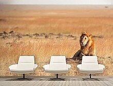 Fototapete Tapete Kinderzimmer Löwe Afrika Tiere