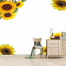 Fototapete Tapete Vlies Tapeten Sonnenblume