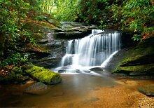 Fototapete Tapete Wasserfall Fluss Dschungel Foto