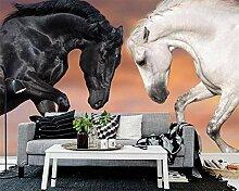 Fototapete Tiere Tapete Weißes Pferd Dunkles