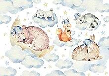 Fototapete Tiere Wolken Sterne Kinderzimmer