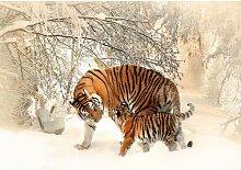Fototapete Tiger 1.46 m x 208 cm East Urban Home