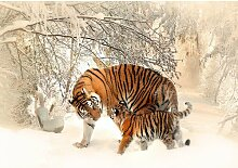 Fototapete Tiger 2.9 m x 416 cm East Urban Home