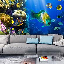 Fototapete - Unterwasserparadies