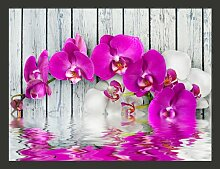 Fototapete Violet Orchids with water reflexion 193