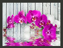 Fototapete Violet Orchids with water reflexion 309