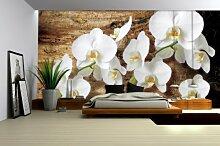 Fototapete Vlies Orchidee Weiß Holzmaserung XXL