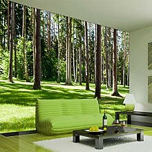 Fototapete Wald 3D Wandbilder Für Fernseher