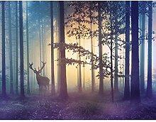 Fototapete Wald Hirsch - Vlies Wand Tapete