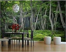 Fototapete Wald - Japanischer Wald -