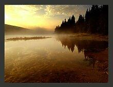 Fototapete Wald und See 309 cm x 400 cm