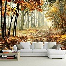 Fototapete Wald Vlies Tapete Moderne Wanddeko