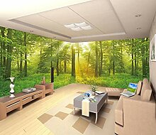 Fototapete Wald Schlafzimmer Riesenauswahl Zu Top Preisen