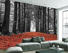 Fototapete Waldweg Vlies Tapete Moderne Wanddeko
