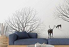 Fototapete Wallpaper Wald Wallpapers Für