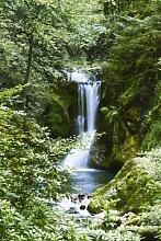 Fototapete Waterfall in Spring, 4-Teilig - Größe 183 x 254 cm, Motivtapete Bildtapete Wasserfall im Frühling im Wald Fluss Dschungel Urwald Natur - Wall Mural
