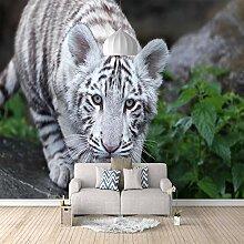 Fototapete Weißer Tiger 3D Wandbilder Für