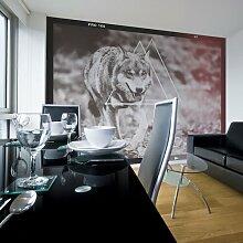 Fototapete Wolf - Photo 309 cm x 400 cm East Urban