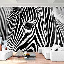 fototapete afrika günstig online kaufen | lionshome - Fototapete Wohnzimmer Schwarz Weiss